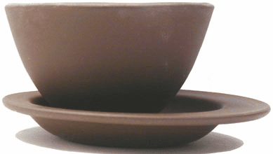 Mayflower Tea Cup with Saucer