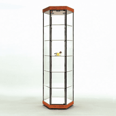 Full Vision Glass Hexagonal Tower Display Case