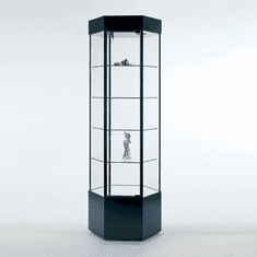 Quick Ship - Hexagonal Tower Display Case