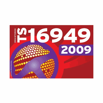 ISO 16949 2009