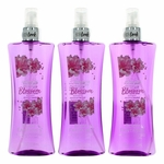 Japanese Cherry Blossom by Body Fantasies, 3 Pack 8 oz Fragrance Body Spray for Women