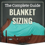 Measuring For Horse Blankets and Sheets