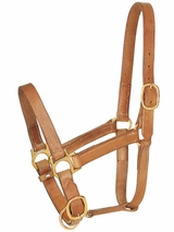 Schutz Harness Leather Turn-Out Halter