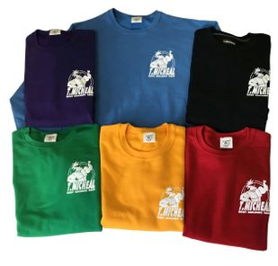 New- Premium T. Micheal Sweatshirt with Back Print- # 113FB