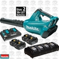 Makita XBU02PT1 36V LXT Li-Ion Blower Kit w/4 5.0ah Batts+ 4 Port Charger