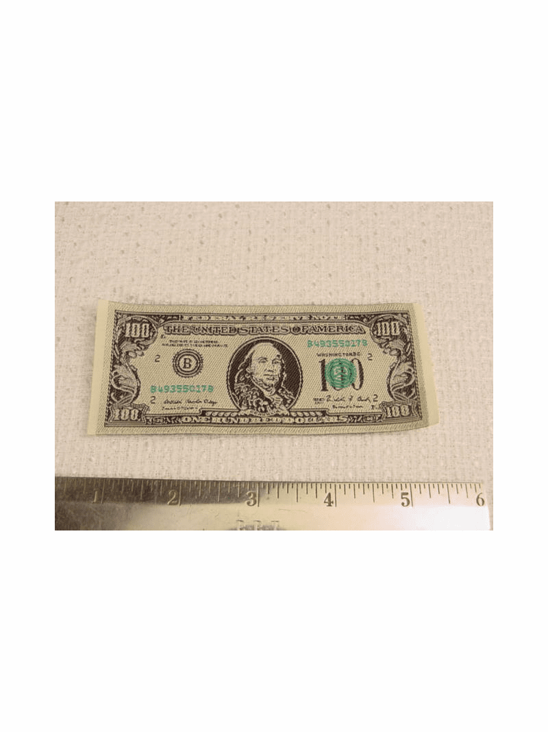 Hundred Dollar Bill $100 Cash Money Embroidered Jacquard Patch Applique