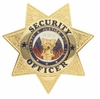7 Point Badge Security Officer (Nickle only)