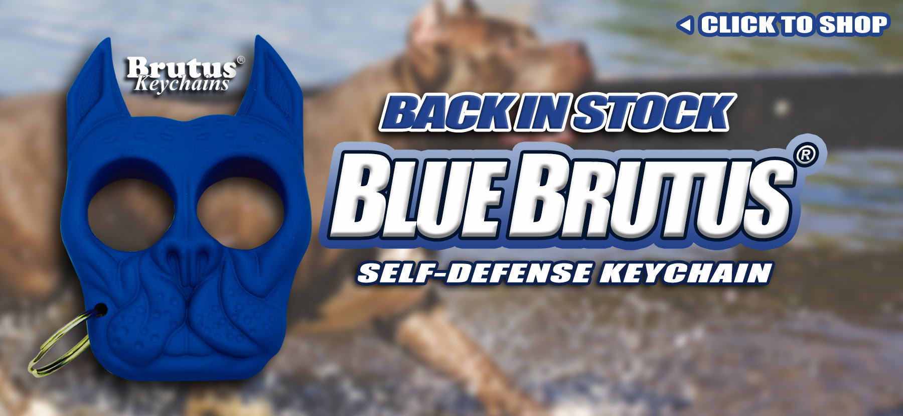 Blue Brutus Bulldog Defense Keychain