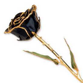 Lacquer Dipped Gold Trim Black Rose