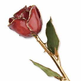 Lacquer Dipped Gold Trim Cinnamon Pearl Rose