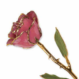 Lacquer Dipped Gold Trim Dusty Pink Rose