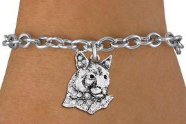 <bR>               EXCLUSIVELY OURS!!<Br>         AN ALLAN ROBIN DESIGN!! <BR>CLICK HERE TO SEE 1000+ EXCITING <BR>   CHANGES THAT YOU CAN MAKE!<BR>   LEAD, NICKEL & CADMIUM FREE!! <BR> W1354SB - DETAILED COUGAR WITH <BR> CLEAR CRYSTALS CHARM & BRACELET <BR>     FROM $5.40 TO $9.85 �2012