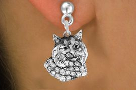 <bR>                 EXCLUSIVELY OURS!!<Br>           AN ALLAN ROBIN DESIGN!!<BR>     LEAD, NICKEL & CADMIUM FREE!! <BR>W1352SE - DETAILED BOBCAT WITH <BR>CLEAR CRYSTALS CHARM EARRINGS <BR>       FROM $4.95 TO $10.00 �2012