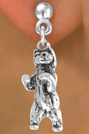 <bR>              EXCLUSIVELY OURS!!<BR>CLICK HERE TO SEE 65+ EXCITING<BR> CHANGES THAT YOU CAN MAKE!<BR>             LEAD & NICKEL FREE!!<BR>     W217SE - STANDING BEAR &<Br>       EARRING FROM $4.50 TO $8.35