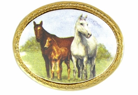 "<bR>                      EXCLUSIVELY OURS!!!<Br>      W11742P - OVAL ""FAMILY HERD""<Br>GOLD TONE TRIM PIN AS LOW AS $5.60"