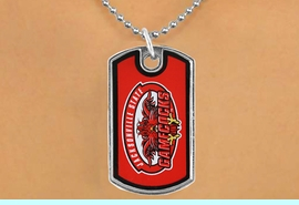 """<Br>                LEAD & NICKEL FREE!!<Br>          STERLING SILVER PLATED!!<bR>W16995N - LICENSED JACKSONVILLE<Br>   STATE UNIVERSITY """"GAMECOCKS""""<bR>           DOG TAG NECKLACE FROM<br>                       $1.99"""