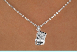 """<Br>              LEAD & NICKEL FREE!!<BR>     W14622N - ACCORDION ON A<Br>CHILDREN'S 12"""" CHAIN NECKLACE<BR>                  AS LOW AS $3.55"""