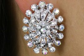 <Br>                 LEAD & NICKEL FREE!!<Br>        W18332E - DAZZLING GENUINE<Br>AURORA BOREALI & CLEAR AUSTRIAN<Br>  CRYSTAL CLIP-ON EARRINGS FROM<Br>                      $4.50 TO $10.00
