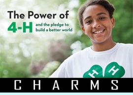 <BR>   WHOLESALE 4H CLUB CHARMS <BR> CADMIUM, LEAD AND NICKEL FREE <BR>             SOLD INDIVIDUALLY