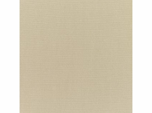Antique Beige: Sunbrella Fabric