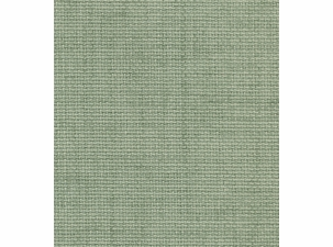 Rave Spearmint: Indoor/Outdoor Fabric