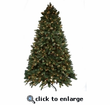 6.5' Pre-lit Grand Balsam Tree 600 Clear Lights