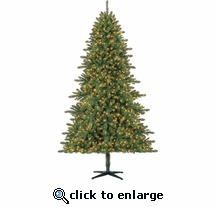 7.5' Quick Set Fairbanks Fir 1200 Clear Micro Lights