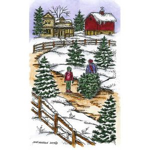 Bringing Home The Tree and Spruce - NN10712