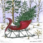 Sleigh With Tree in Forest - PP10722
