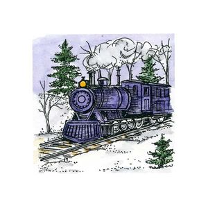 Small Train in Spruce Forest - C10723