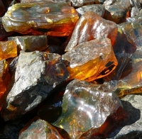 Amber From Around The World
