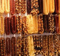 Frequently Asked Questions About Amazing Amber Jewelry