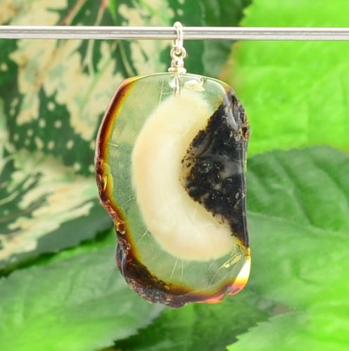 One of a Kind Amber Slice Pendant Made of Amazing Baltic Amber