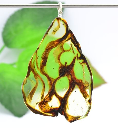 Amber Slice Pendant [See what's inside Baltic Amber]