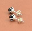 Amber Stud Earrings with Black Baltic Amber