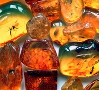 Healing is natural with Baltic amber