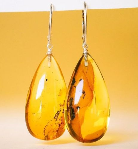 Large Amber Earrings Made of Precious Baltic Amber