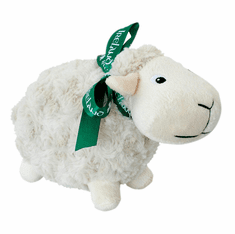 Irish Woolie Sheep