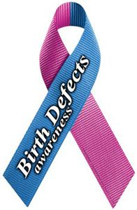 Birth Defects Awareness Ribbon Magnet