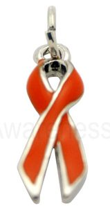 Multiple Sclerosis Ribbon Charm