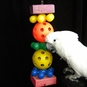 Spin-Me-Round Cockatoo/Macaw Parrot Toy