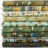Anderson Design Group for Riley Blake, National Parks in FAT QUARTERS 9 Total (PRECUT)