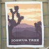 "Anderson Design Group for Riley Blake, National Parks, Joshua Tree Panel (36"" Panel)"