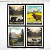 "Anderson Design Group for Riley Blake, National Parks, Rocky Mountains Pillow Panel (36"" Panel)"