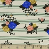 Arleen Hillyer for Birch Organic Fabrics, Pirouette, KNIT, Rosette Stripes