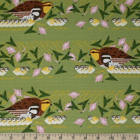 AVAILABLE FOR PREORDER, Charley Harper for Birch Organic Fabrics, BARKCLOTH, Family Outing