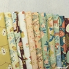 Teagan White for Birch Organic Fabrics, Best of Teagan White in FAT QUARTERS 11 Total (PRECUT)