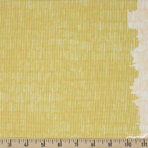 Carolyn Friedlander for Robert Kaufman, Harriot, Single Border Screen Pickle