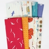 Jay-Cyn Designs for Birch Organic Fabrics, Summer '62 in FAT QUARTERS 10 Total (PRECUT)