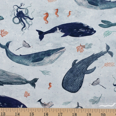 Katherine Quinn for Windham, Whale Tales, Whales Surf